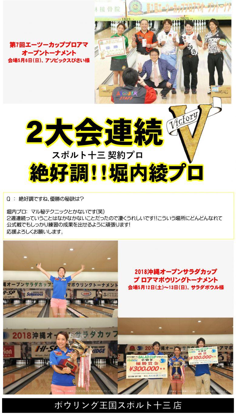 堀内プロV2-4